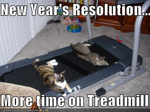 funny pictures resolution cats treadmill Postanowienie noworoczne